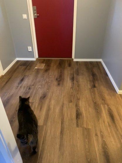 vattentätt och lämpligt golv för hall